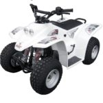 QUADZILLA BUZZ 2K10 WHITE