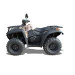 Quadzill TERRAIN-600 Road Legal Quad