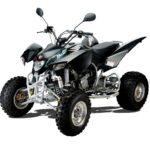 Quadzilla xlc500 Road Legel Quad
